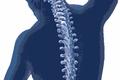 Как не травмировать позвоночник, выполняя упражнение на спину