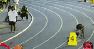 Усэйн Болт 400м - 46.44