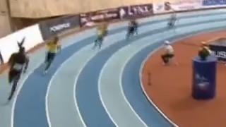400м Финал А - Мужчины - Русская зима 2014