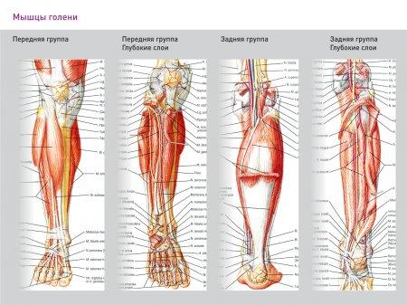 Беговые боли, травмы и их лечение