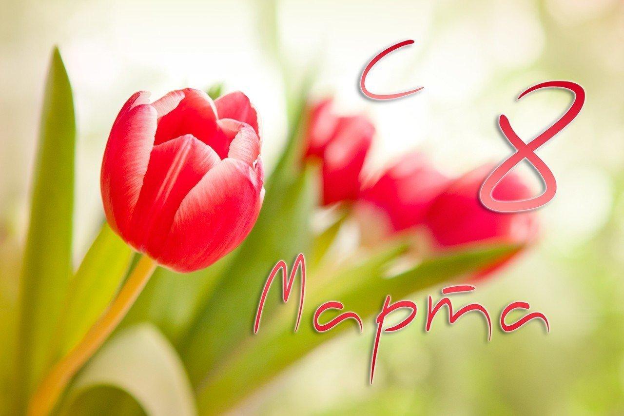 С весенним праздником 8 марта!!!