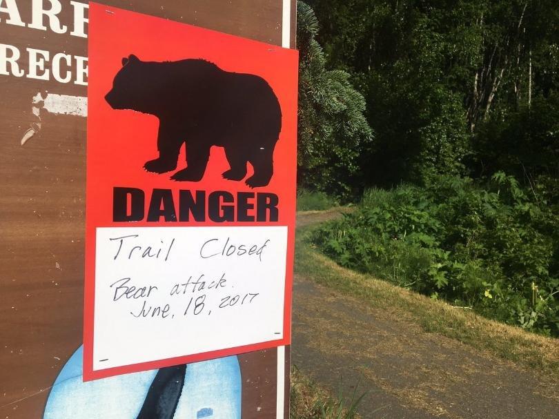 Медведь загрыз участника марафона на Аляске
